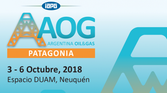 In 2018 comes the maximum meeting of the hydrocarbons in Patagonia Argentina